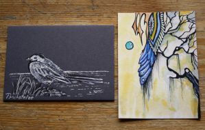 first two ATC cards by SwarzezTier
