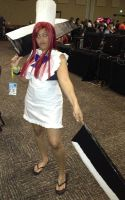 Colossalcon 2014 132 by TGrrr89