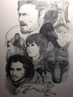 Starks by CaptainShizzzle