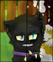 Two face's of Scourge by SiaAtWalmart11