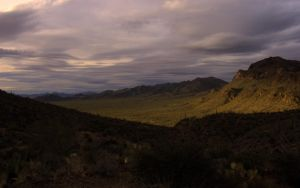Late Arizona Winter Afternoon by Nohbudy
