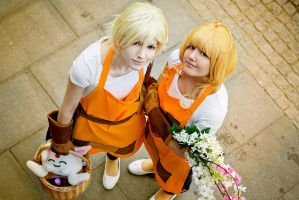 Sakura and Fai: Welcome to our little wonderland by NorFrosch