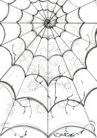 spider's web -sketch- by dfmurcia
