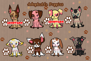 Adoptable Puppies OPEN by Dai-Elric