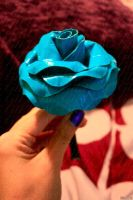 is it a rose? view two by lyssalove