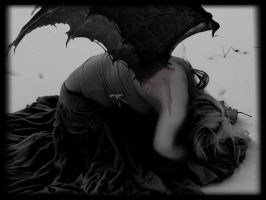 Broken wings by Nettis