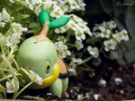 Turtwig by LexerJ