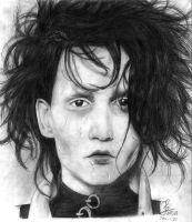 Edward Scissorhands by ColorfulGuitar