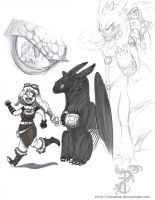 More HTTYD fanarts by yamilink