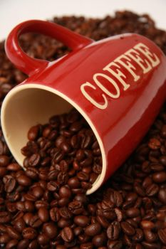 Coffee Cup 14045159 by StockProject1