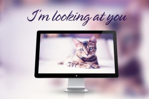 I'm looking at you - Wallpapers by Hercules1997