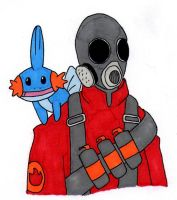 Pyro and Mudkip by Cuccoteaser