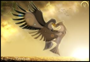 Fly in paradise by zavraan