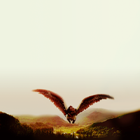 Harry and Buckbeak by Sx2