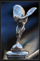 Spirit of Ecstasy by Amnet