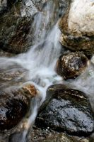 Falling Water :: by march9