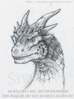 older Dragon by Strecno