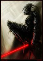 Darth Bro'ka by Tsabo6