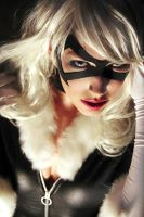 Black Cat by shut-up-and-duel-me