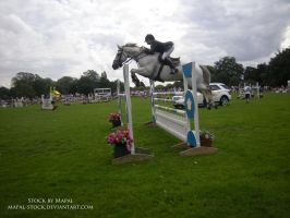 British Show Jumping 88 by mapal-stock