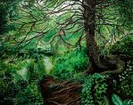 Old Pine Tree by cirruscastle