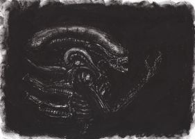 Xenomorph by RaccoonStripes