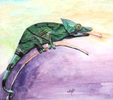 The Chameleon by Giselle-M