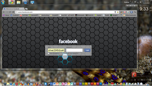 Modified Facebook Login by silver2545