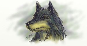 Axel looks like Balto by gwendy85