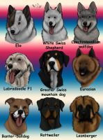 My favourite dogbreeds by NaokoHara