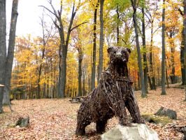 Forest Bear by Steppenwulfe