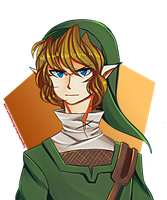Twilight Princess Link by LegendWaker