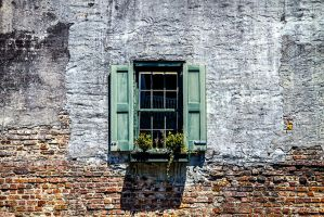 Window by nigel3