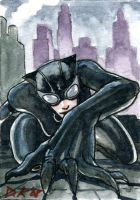 Catwoman Sketch Card by DKuang