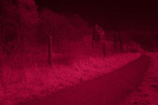 IR photo number eh... by murknl