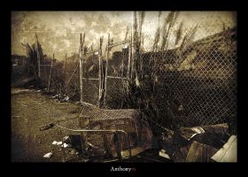 2012: The Shopping Cart by Anthonym