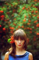 mountain ash by NataliaCiobanu