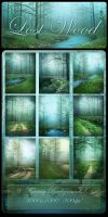 Lost Wood backgrounds by moonchild-ljilja