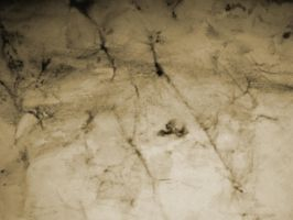 Cracks 1 by Cynthetic