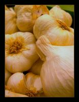 Garlic by RowanLewgalon
