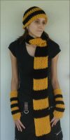 Harry Potter Hufflepuff Winter Student Set by RebelATS
