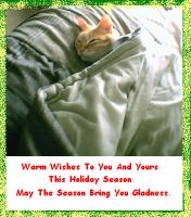 Warm Wishes by Ironhold