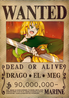 Wanted - Iron Witch + info by Mowwiie