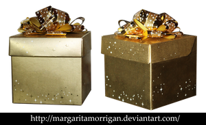 gift box by margarita-morrigan