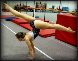 Arched Split Planche by Michelle-xD