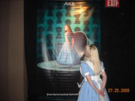 Alice in Wonderland exhibit 19 by ChristineFrollophile
