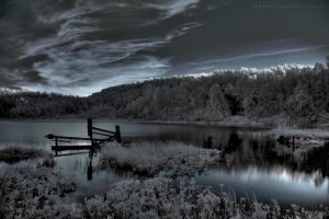 Cold Light Of Day Part 2 by BoholmPhotography