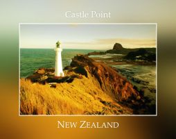 Castle Point Light House by niallabrown