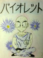 Krillin of Violet by Tora-no-Chi