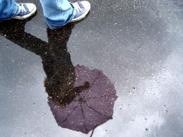puddle reflection by Mustardplz